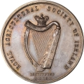 First Clonmel Agricultural Fair 1865 in Silver