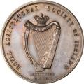 First Clonmel Agricultural Fair 1865 in Silver